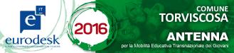 Antenna Torviscosa Comune_3x13 2016