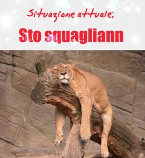 sto squgliann